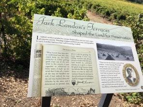 Jack loved the land